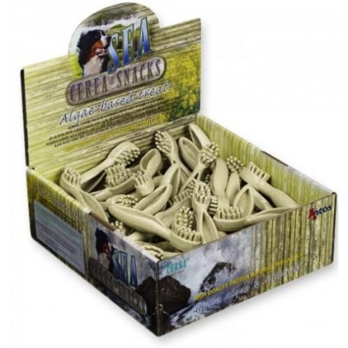 Antos  Algae Toothbrush - 15cm