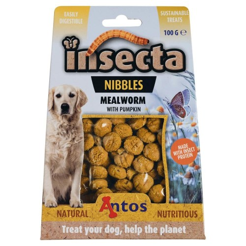 Insecta Nibbles - Antos