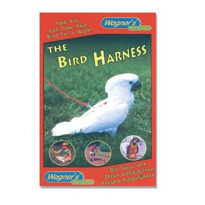 Bird Harness
