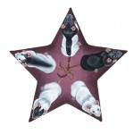 Star Rats