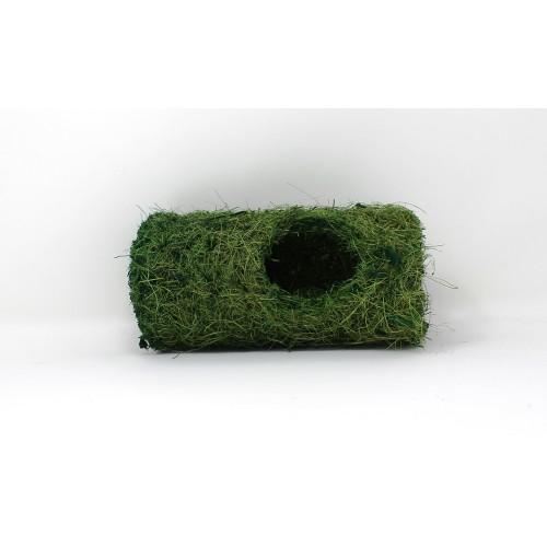 Coco Tunnel - Forest Green
