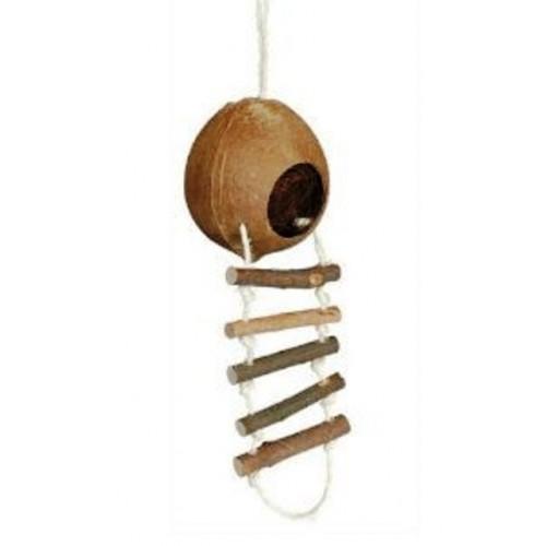 Coconut Ladder - Single