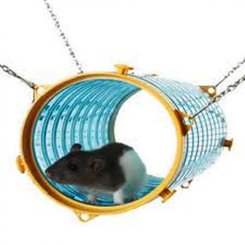 Rat and Ferret Tube - Savic